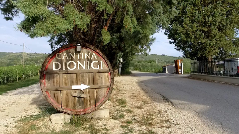 Meeting point at Cantina Dionigi winery
